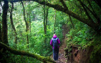 Costa Rica Aventure Pura Vida