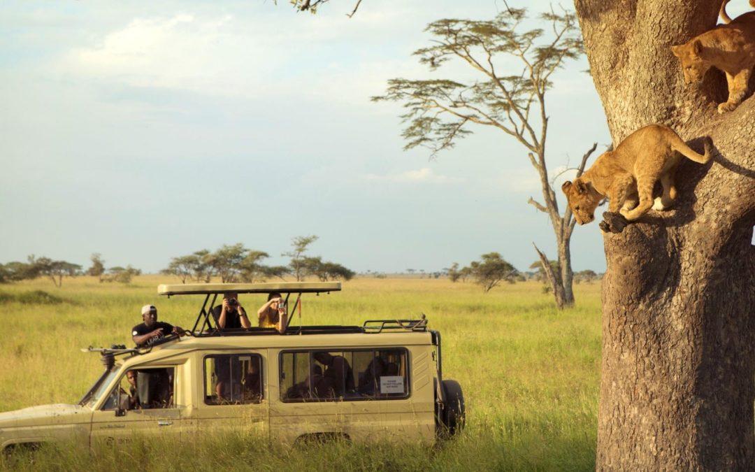 Tanzanie Fun Tour