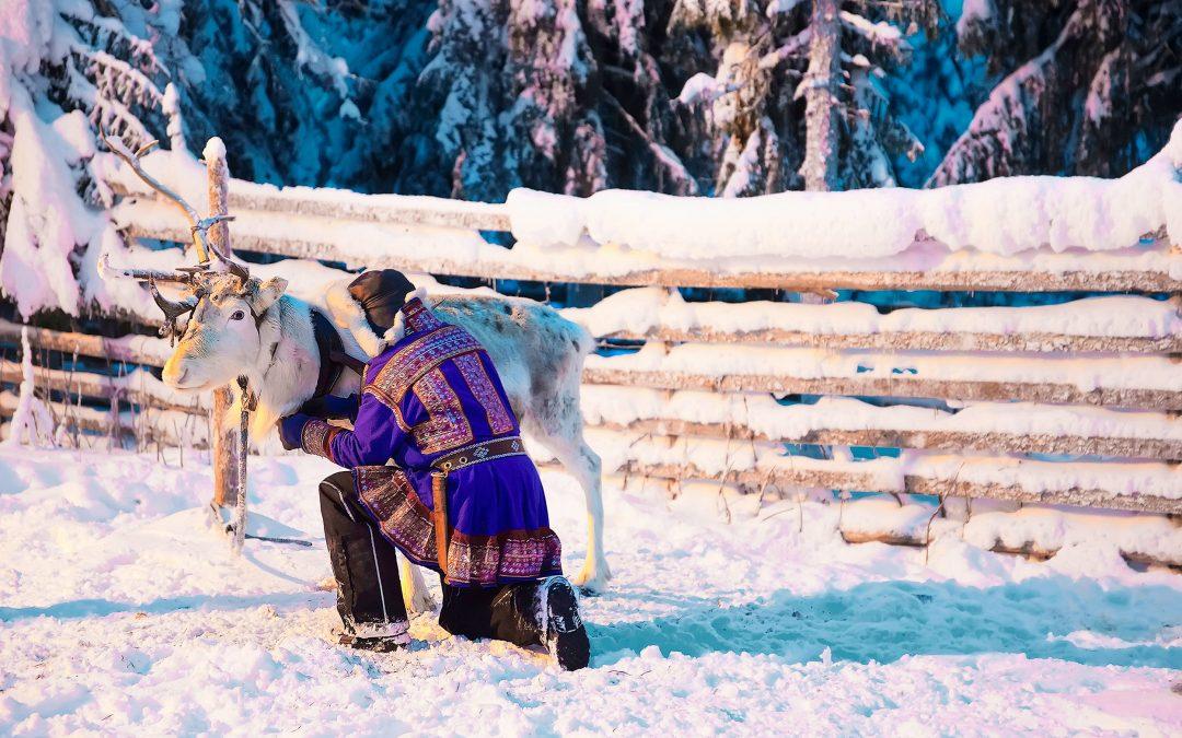 Finlande Hiver Lapon