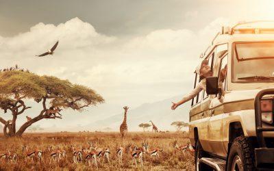Kenya Safari & Yoga