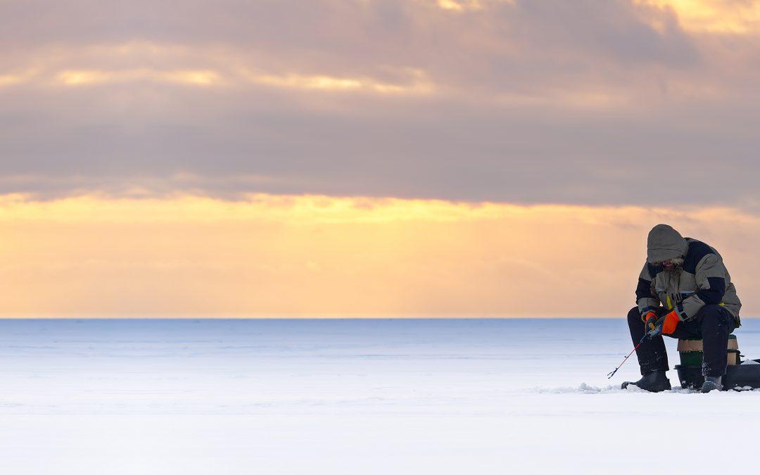 Suède Survie Arctique